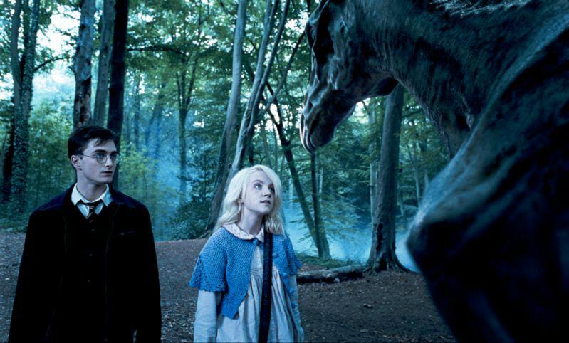 Fotograma de Harry Potter y la Orden del Fénix sorteamos 3 películas